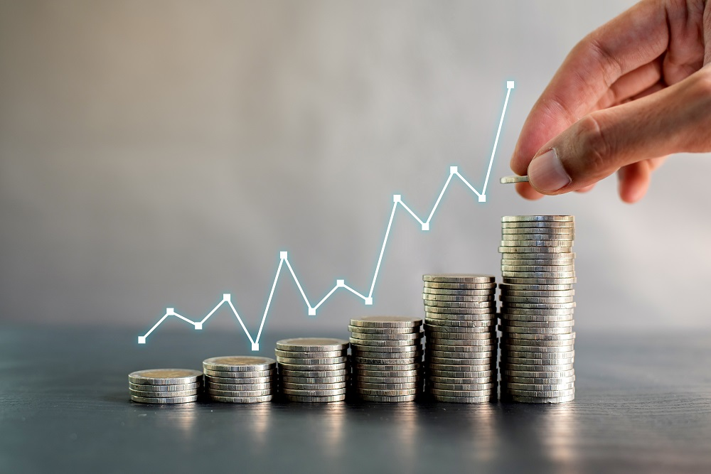 Should I focus on profits or cashflow?